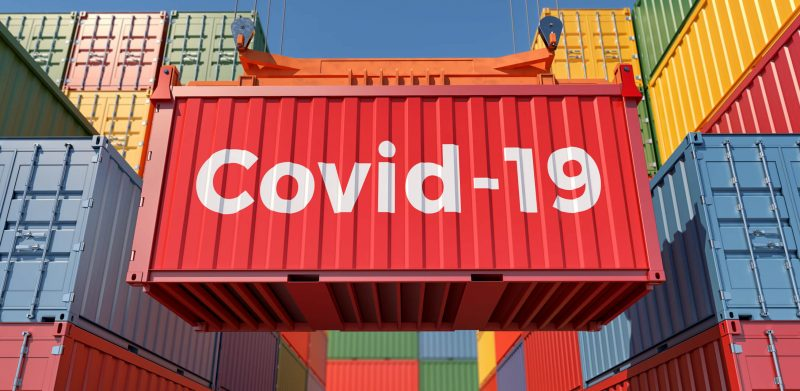 Import Export during Covid
